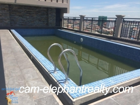 Brand New Pool Gym Service Apartment 1Bed Unit $600-800/month Russian Market