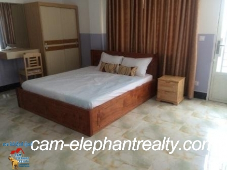 Nice Brand New Apartment near Russian Market for Rent,1BR=$300-$350
