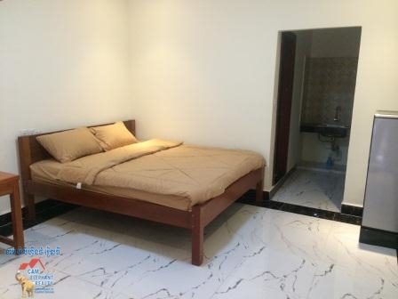 Furnished Apt in South of Russian Market for Rent,1BR=$150