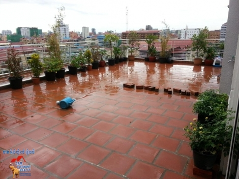 Penthouse with terrace,plants, 2bed Unit $1200/month