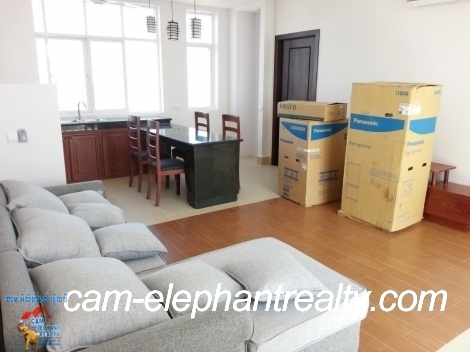 Brand New Western Service Apartmnet 2bed+3baths Unit $750-800/month Russian Market
