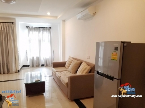 Western Apartment 1bed+2baths $450-500/month near Soriya Mall