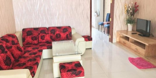 1 Bed 1 Bath Beautiful Furnished Apartment For Rent,Near Bali Hotel and CIA