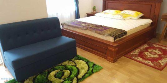1 Bedroom $350 Brand New Apartment For Rent in Phnom Penh,Riverside