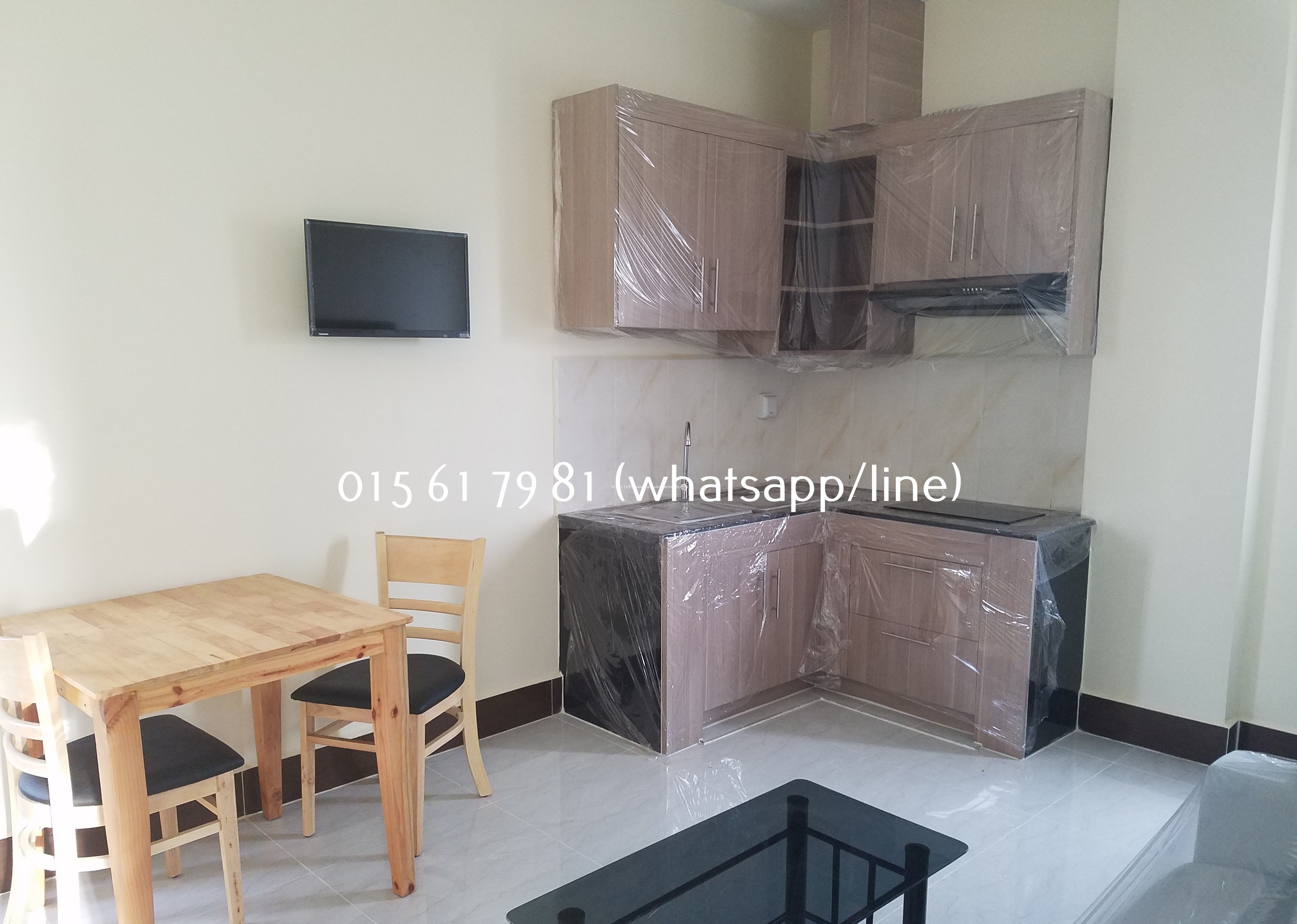 New Western Apartment 1bedroom $450/month Russian Market