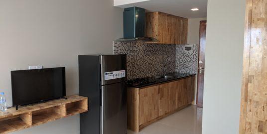 New Western Studio Apartment $250/month near TK avenue