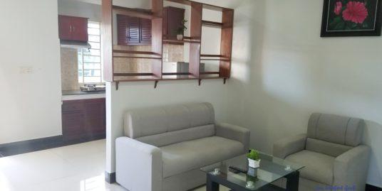 Western Apartment 1Bedroom *elevator $370/month BKK3