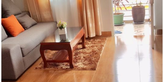 1 Bed 1 Bath Beautiful Fully Furnished Apartment For Rent In Phnom Penh,Riverside
