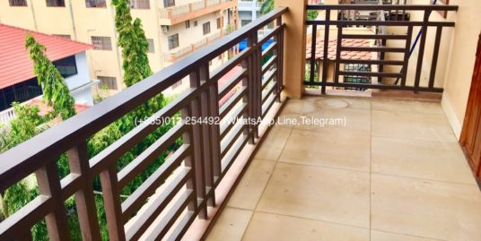 2 Bedrooms Western Service Elevator Apartment For Rent,Russian Market