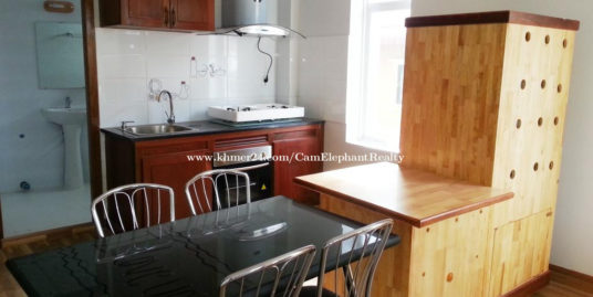 Western Apartment 1Bedroom with balcony Russian Market