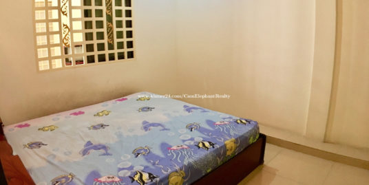 1 Bedroom Furnished Apartment For Rent In Phnom Penh,BKK3 $200