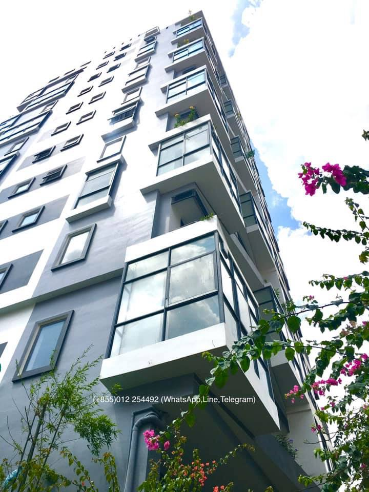 Brand New!!! 1 Bed 1 Bath Western Service Elevator Apartment for Rent,Riverside