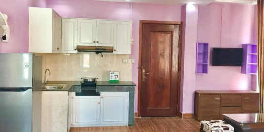 1 Bed 1 Bath Western Furnished Apartment for Rent,Olympic Stadium