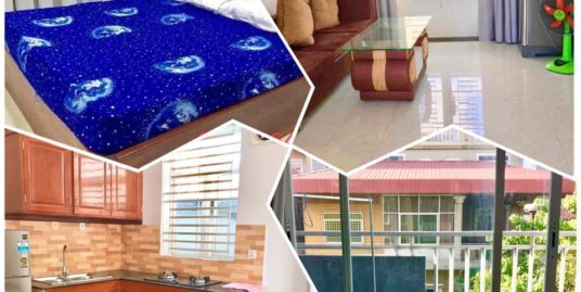 1 Bed 1 Bath Western Fully Furnished Apartment For Rent In Phnom Penh,BKK3
