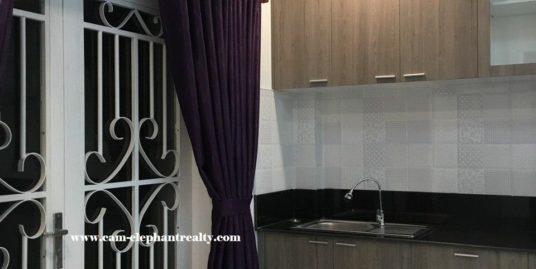 Apartment for Rent (Boeung Pralit)