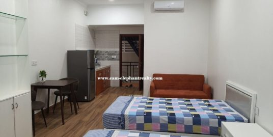 Apartment for Rent (1B; BKK3)