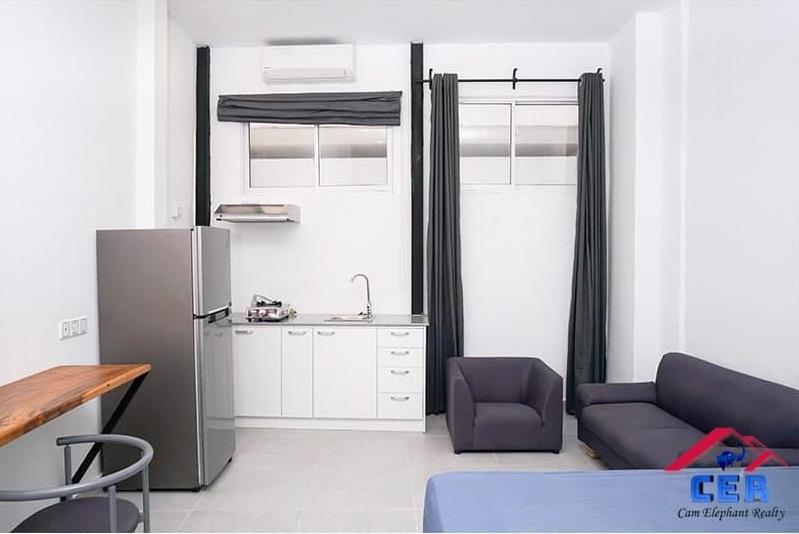 Luxury Apartment for Rent (Studio; Tonle Bassac area)